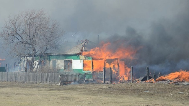 Число жертв на лесных пожарах возрастает