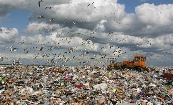 В Чечне объявлена борьба мусору фото 2