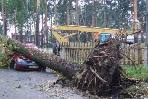Ураган пронесся по Моздокскому району Северной Осетии фото 2