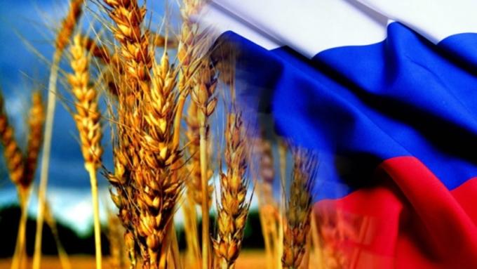 Россия планирует поставлять в Венесуэлу пшеницу