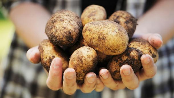 Нехватка продовольствия на земле может случиться через десять лет