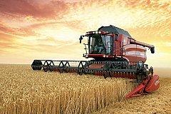 Медведев заявил, что урожай зерновых в России превысил 120 млн тонн