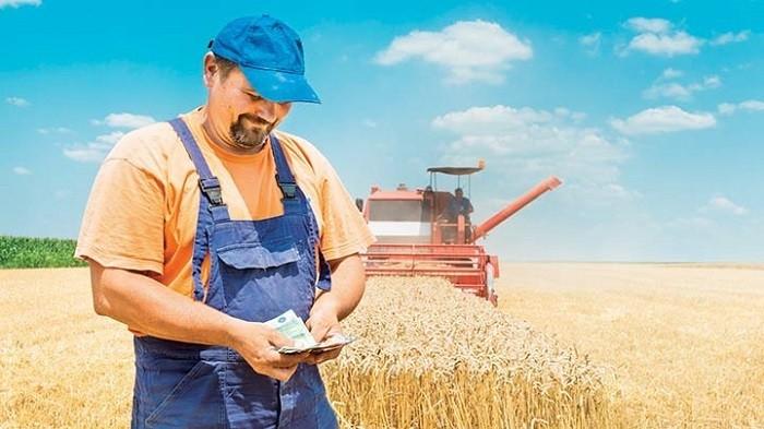 Минсельхоз спрогнозировал экспорт сельхозпродукции фото 2