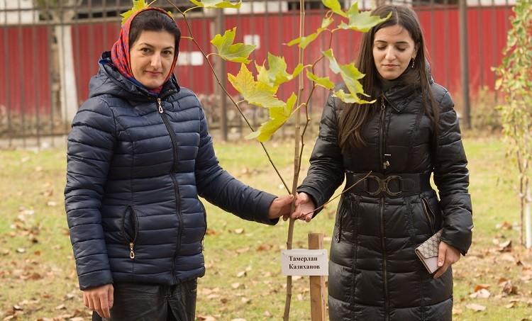 Одно из посаженных деревьев носит имя погибшего журналиста Тамерлана Казиханова