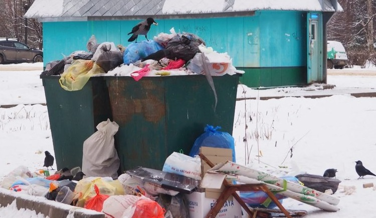 Сколько мусора в месяц производит один человек? Сокрушительные итоги эксперимента