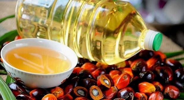 В России пальмовое масло лишили льгот фото 2