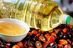 В России пальмовое масло лишили льгот