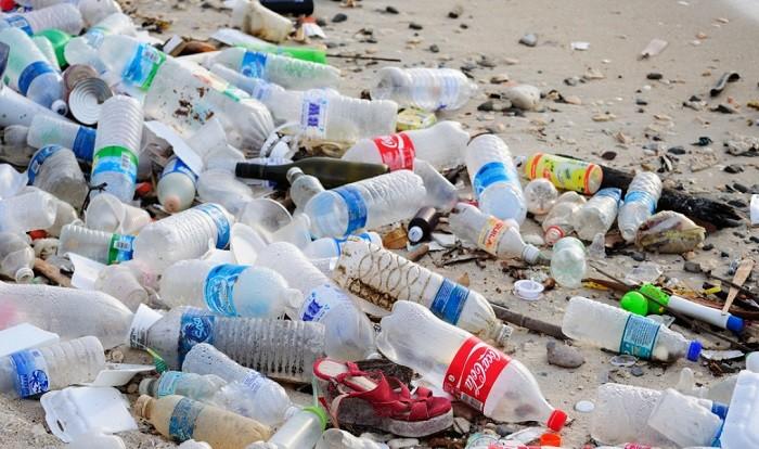 Хорошие новости для планеты. Ученые обнаружили червей, поедающих пластик. фото 2