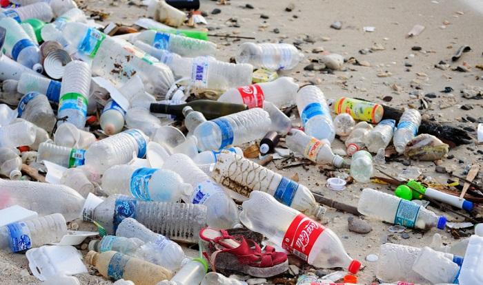 Хорошие новости для планеты. Ученые обнаружили червей, поедающих пластик.