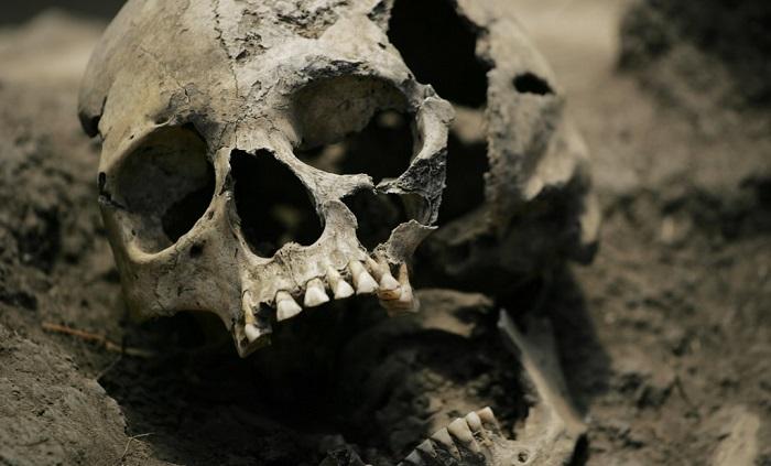 Останки депутата и ее семьи, зверски убитых в 2012 году, найдены в Подмосковье