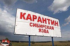 В РОССИИ СИБИРСКАЯ ЯЗВА. ОТКУДА?!