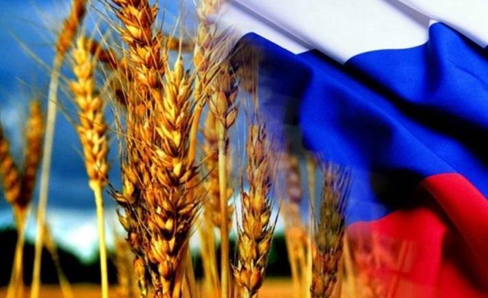 На 4,7% уменьшился неэнергетический экспорт России
