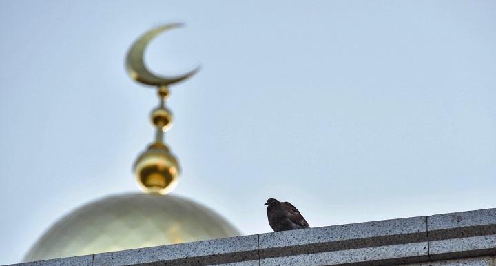 Перевод земли под мечеть одобрили в Екатеринбурге