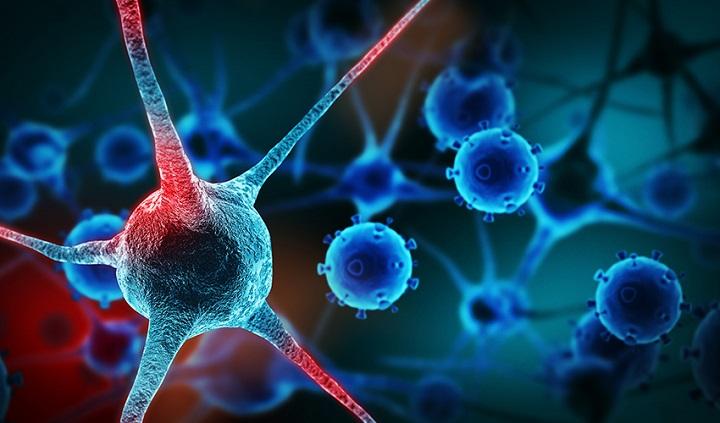 Американские ученые обнаружили вещество убивающее раковые клетки.