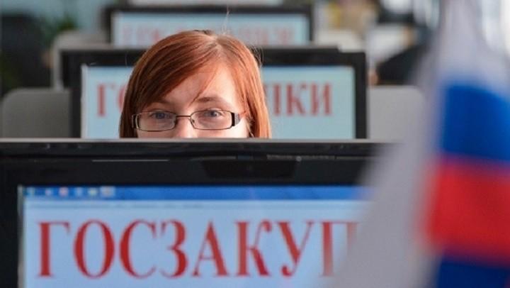 Счетная палата о госзакупках: Сотни нарушений на сотни миллиардов рублей. фото 2
