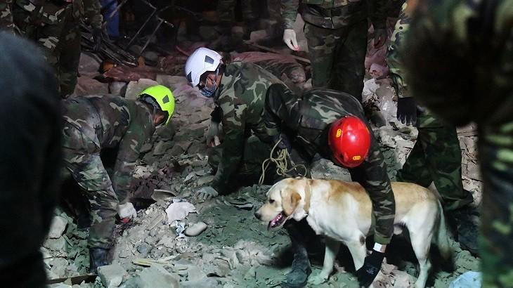 Спасатели ведут поиск выживших. Фото: ria.ru