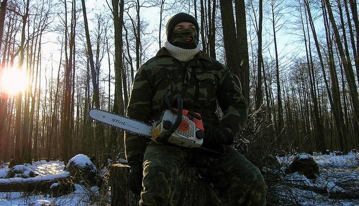 «Черные лесорубы» нанесли серьезный ущерб лесам Иркутской области фото 2