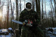 «Черные лесорубы» нанесли серьезный ущерб лесам Иркутской области