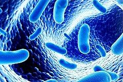Тысячи неизвестных вирусов обнаружены в теле человека