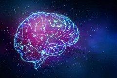 Откуда сознание? Может ли наш мозг помочь доказать, что Вселенная сознательна?