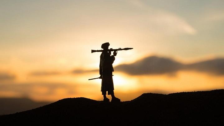 Шойгу заявил о готовности ОДКБ противостоять талибам
