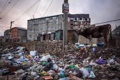 Дагестанские парки станут более чистыми
