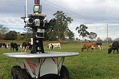 Робот-скотовод из Австралии