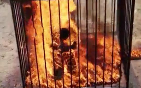 Исламские боевики изгруппировки живьем сожгли неменее полусотни юношей вИраке