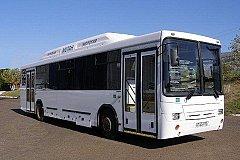 Газомоторные автобусы станут реальностью