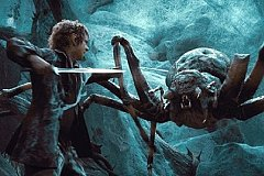 В горах Кавказа ожили пауки-людоеды