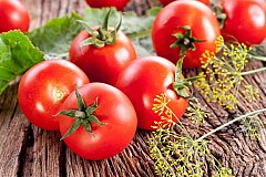 В 2020 году Россия будет обеспечена томатами