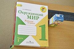 В ДНР и ЛНР будут обучать по российским программам