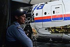 Пять стран ищут виновных в крушении малазийского самолёта