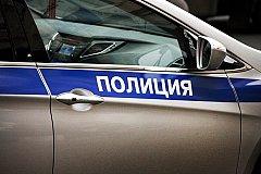 Полуголый мужчина станцевал на патрульной машине