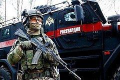 Путин: Охранять губернаторов может Росгвардия