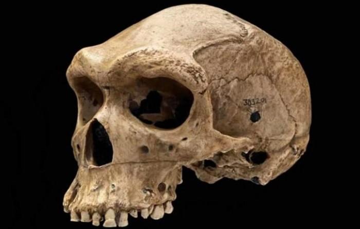 Загадочные археологические находки фото 6