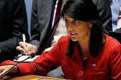 Хейли утверждает о десятках химатак в Сирии