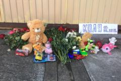 Чиновники Сочи винят бабушку в гибели мальчика в ливнёвке