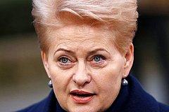 Литва ввела санкции против России, но еще не знает какие