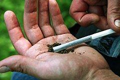 Депутаты Рады Украины поддерживают легализацию марихуаны
