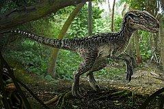 Динозавр в Тбилиси. ВИДЕО